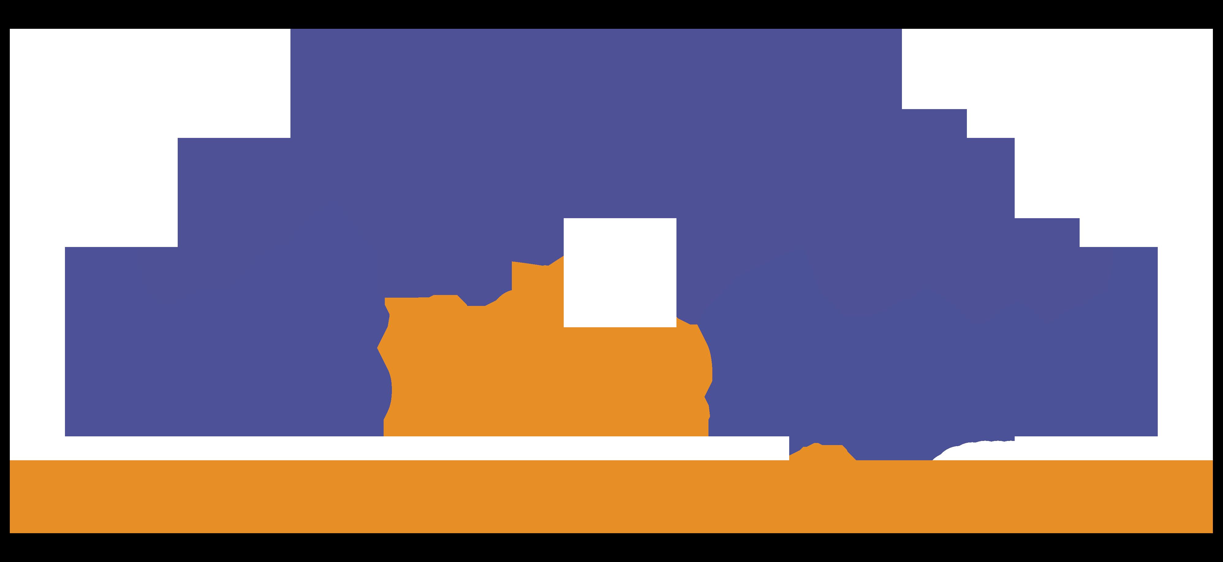 GMS Live Expert